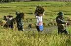 Thắm đượm tình quân dân vùng biên giới Lai Châu