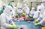 Khánh Hòa: Đơn hàng mua cá ngừ đại dương từ nước ngoài về nhiều, nhưng doanh nghiệp lại đang lo thiếu cái gì?