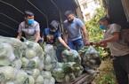 Hội Nông dân tỉnh Hải Dương: Bằng cách này, 30.000 tấn rau, củ, quả được tiêu thụ nhanh chóng trong đợt dịch Covid-19