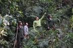 BQL rừng đặc dụng – phòng hộ Thuận Châu: Chủ động PCCCR mùa hanh khô
