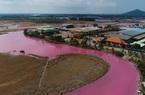 Nước đầm bỗng dưng chuyển thành màu hồng: Tạm dừng hoạt động 4 tháng rưỡi với Công ty Nghê Huỳnh