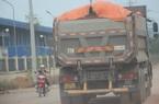 Bình Định: Đoàn xe hổ vồ chở đất gắn logo Bá Sanh Đường tung hoành ở Thị xã Hoài Nhơn