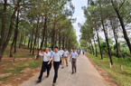 Huế: Cải tạo đồi Vọng Cảnh thành nơi ngắm cảnh đẳng cấp và khai thác dịch vụ