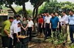 Ninh Bình: Thành lập Hợp tác xã sản xuất, tiêu thụ mật ong Cúc Phương