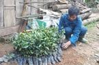 Chuyện lạ ở Lào Cai: Vì sao ở đây nhiều hộ xin ra khỏi diện nghèo?