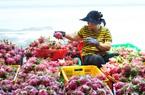 Trung Quốc mạnh tay chi 610 triệu USD mua trái cây Việt Nam, vẫn cần mở rộng thị trường ngoài Trung Quốc