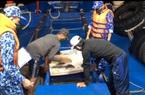 Cảnh sát biển truy đuổi hơn 4 giờ, bắt tàu chở 60.000 lít dầu DO không rõ nguồn gốc