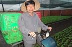 Tại sao cựu phóng viên Nguyễn Hoài Nam bị khởi tố, bắt tạm giam?