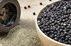 Giá nông sản hôm nay 6/4: Giá tiêu thế giới tăng sốc, cà phê nhích nhẹ