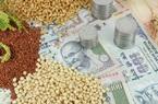 'Cơn sóng thần' Covid-19 lần hai ảnh hưởng tới thị trường nông sản Ấn Độ ra sao?