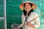 """Tây Ninh: Nông dân nuôi 10.000 con côn trùng đặc sản, thoạt nhìn thấy nhiều người kêu lên """"quê tôi con này đã tuyệt chủng"""""""