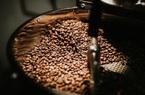 Giá nông sản hôm nay 3/5: Tuần thứ 4 giá cà phê tăng, tiêu cao nhất 69.000 đồng/kg
