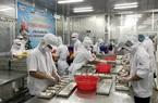 Thủy sản Sài Gòn lỗ âm vốn chủ 849 tỷ nợ Sacombank hơn 950 tỷ đồng