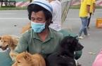 Vụ 15 con chó bị tiêu hủy ở Cà Mau, đại diện Cục Thú y: Nên phối hợp với cơ quan thú y xử lý