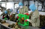 Nông nghiệp giữ vững kỳ tích giữa đại dịch Covid-19 (bài 4): Chủ động thích ứng, doanh nghiệp tăng trưởng ấn tượng