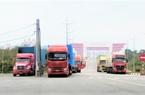 Quảng Ninh lên phương án dài hơi cho xuất khẩu nông sản