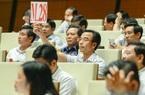 2 giáo sư tự ứng cử đại biểu Quốc hội và Giám đốc Bệnh viện Bạch Mai cùng đơn vị bầu cử