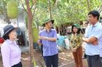 Đồng Nai: Nhiều hộ nông dân giàu lên nhờ làm nông thôn mới kiểu mẫu