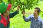 Nông nghiệp hữu cơ: Mô hình canh tác lý tưởng mang lại nhiều lợi ích cho nông dân Sơn La