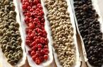 """Giá nông sản hôm nay 6/5: Cà phê cán mốc 34 triệu đồng/tấn, giá tiêu vẫn """"lình xình"""""""