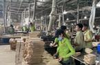Cân bằng lợi ích để xuất khẩu lâm sản bền vững