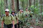 """Khu Bảo tồn thiên nhiên Nâm Nung: Gìn giữ """"kho báu"""" đa dạng sinh học"""