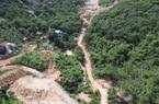 Bà Rịa - Vũng Tàu: Khởi tố vụ phá 2ha rừng phòng hộ trên núi Thị Vải