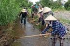 Phú Yên: Khô hạn nghiêm trọng, thủy nông đề nghị thủy điện xả nước liên tục để cứu cây trồng