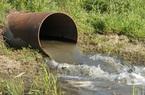 Công ty thủy sản từng bị phạt 500 triệu đồng vì xả thải ra môi trường tiếp tục bị phạt