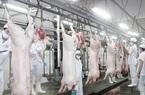 Công ty Vissan vẫn cung cấp thịt heo mảnh bình thường