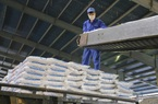 """Giá phân bón tăng """"nóng"""", nông dân khó khăn sản xuất: Nên dừng xuất khẩu"""