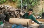 """Bóc gỗ rừng tự nhiên đem đi bán (Bài 2): Đại công xưởng bóc gỗ """"ăn rừng"""""""