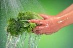 Hà Nội đề xuất giảm giá tiền nước sạch sinh hoạt cho các hộ dân vì dịch Covid-19