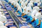 Vĩnh Hoàn giảm 50% công suất, loạt cơ sở chế biến thủy sản khu vực phía Nam phải đóng cửa