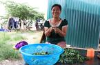 """Clip: Công nhân """"mắc kẹt"""" ở Hà Nội bẫy chim, hái rau dại ăn qua bữa giữa đợt giãn cách xã hội"""