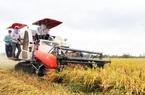 """Thiếu một loại máy quan trọng trong sản xuất lúa, Sóc Trăng nhờ Hậu Giang """"chi viện"""""""