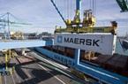 Hãng vận tải container lớn nhất hành tinh báo lãi khủng khi cước logistics leo thang kỷ lục