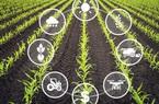 Ngành KH&CN: Ứng dụng công nghệ trong kiểm soát dịch bệnh, hỗ trợ ứng dụng IoT vào nông nghiệp