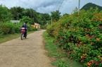 Chiềng Ngần hướng đến nấc thang nông thôn mới nâng cao