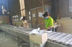 Giá cước vận tải tăng chóng mặt, lên 20.000 USD/container, doanh nghiệp ngành này lo mất đơn hàng tại Mỹ