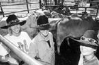 """Australia: """"Khát"""" sinh viên nông nghiệp"""