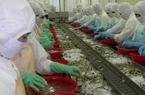 Dự báo xuất khẩu tôm đạt 3,5 tỷ USD