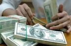 Một tuần điều hành tỷ giá mới: Giá USD tạm thời ổn định