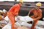Xây dựng thương hiệu  quốc gia cho gạo Việt