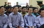 """Xét xử 21 bị cáo vụ phá rừng pơ mu """"khủng"""" ở Quảng Nam"""