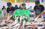 Bộ Công thương đề nghị Mỹ xem xét lại mức thuế chống bán phá giá cá tra