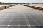 """Quảng Ngãi: Dự án điện mặt trời đầu tiên """"bỏ của chạy lấy người""""?"""