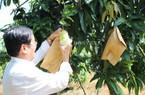 """Đông Nam Bộ """"trải thảm"""" mời doanh nghiệp đầu tư chế biến trái cây"""