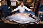 Nhật Bản: Một con cá đem bán được hơn 41 tỷ đồng