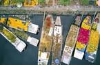 Những chiếc thuyền đầy ắp hoa xuân cập bến Sài Gòn trong những ngày giáp Tết